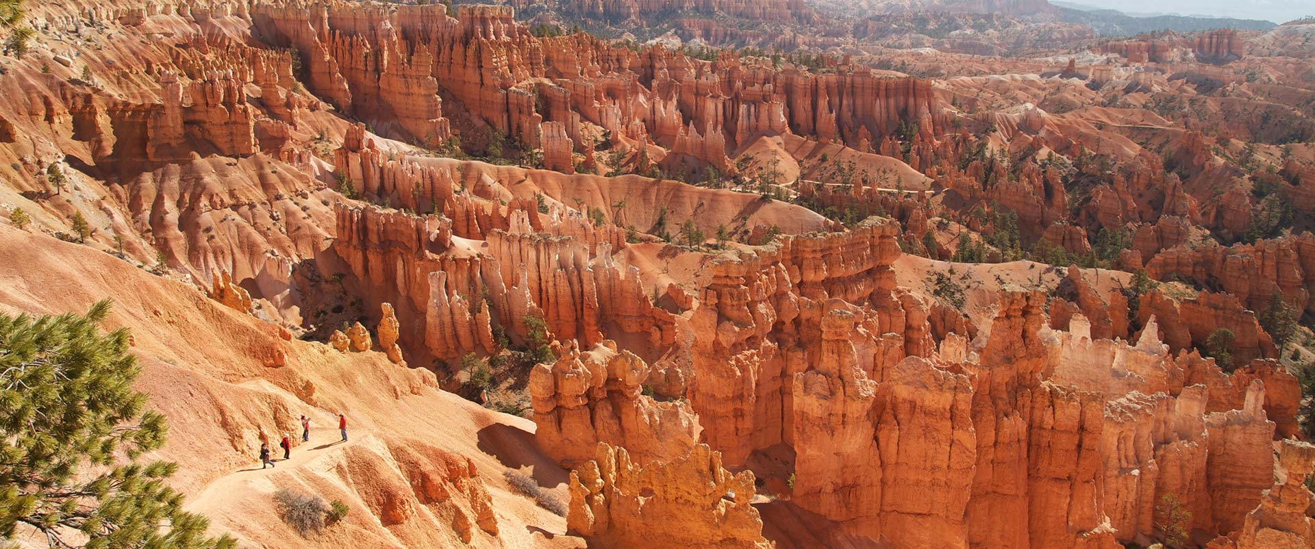 Bryce Canyon Ellis Dieperink