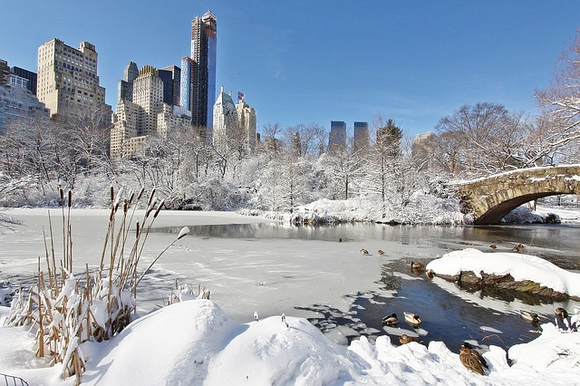 New York in de winter